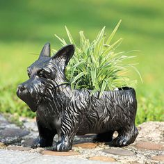This Scottie dog planter box is a fun way to add some character to your yard or garden.
