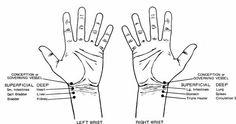 Hands vs organs