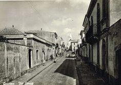 Catania, Vintage, Vintage Comics