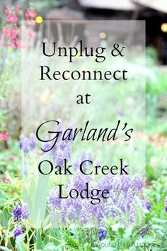 Have a romantic week or weekend to unplug and reconnect at Garland's Oak Creek Lodge in Sedona, AZ. Oak Creek Canyon Arizona, Sedona Arizona, Best Places To Travel, Places To Go, Travel Pics, Travel Ideas, Living In Arizona, Disney Tips, Wanderlust
