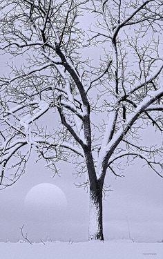 ✯ December Moon