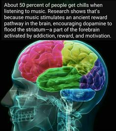 Music really does stimulate