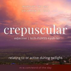 "The <a class=""pintag searchlink"" data-query=""%23wordoftheday"" data-type=""hashtag"" href=""/search/?q=%23wordoftheday&rs=hashtag"" rel=""nofollow"" title=""#wordoftheday search Pinterest"">#wordoftheday</a> is crepuscular. <a class=""pintag searchlink"" data-query=""%23merriamwebster"" data-type=""hashtag"" href=""/search/?q=%23merriamwebster&rs=hashtag"" rel=""nofollow"" title=""#merriamwebster search Pinterest"">#merriamwebster</a> <a class=""pintag searchlink"" data-query=""%23dictionary"" data-type=""hashtag"" href=""/search/?q=%23dictionary&rs=hashtag"" rel=""nofollow"" title=""#dictionary search Pinterest"">#dictionary</a> <a class=""pintag"" href=""/explore/language/"" title=""#language explore Pinterest"">#language</a>"