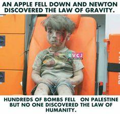 Humanity..???