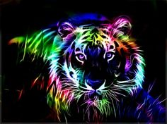Colorful fractal tiger - animal, color, rainbow, fractal, tiger