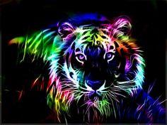 Colorful fractal tiger - animal, color, rainbow, fractal, tiger