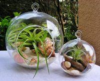 6 Шт./компл. 10 см/12 см/15 см стекло airplants, сад сочные террариум, комнатных растений держатель для дома украшения, домашний декор