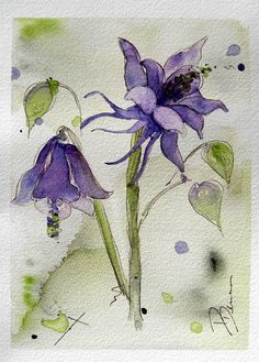 Columbine Watercolor Painting Original by RedbirdCottageArt