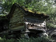 Or another variation of Eloia peasant housing. ---------------------Old wooden hut in Southern Norway.