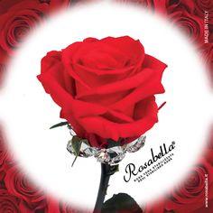 Bella tra le #rose... #Bella perché diversa!  Scegli l'#originale! Rosabella®  #Consegna garantita in 24/48h #Spedizione assicurata e #gratuita.  #rosabella #rosastabilizzata #rosagioiello #madeinitaly Bella, Swarovski, Flowers, Plants, Rose Trees, Plant, Royal Icing Flowers, Flower, Florals