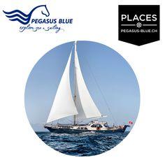 MSY PEGASUS BLUE  – Explore Sea
