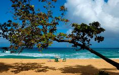 Best Beaches in the Dominican Republic - Beach Holidays for Couples & Families | Travel + Leisure