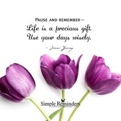 Pause and Remember:  Life is a precious gift.  Use your days wisely.