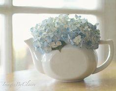 Teapot and hydrangea Love Blue, New Blue, Blue And White, Blue Cream, Hortensia Hydrangea, Blue Hydrangea, White Hydrangeas, Blue Bird, Decoration