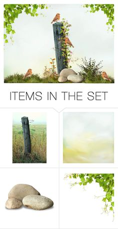 """""""Happy Birds"""" by sjlew ❤ liked on Polyvore featuring art"""