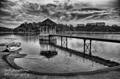 Morning @ MacRitchies \Reservoir - This morning is cloudy day ,no strong sun ,so i convert in to black and white,the good reflection of bridge and tower,the foreground curve create the good framing for this picture