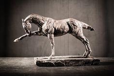 "Focus |© Stephanie Revennaugh Fine Art | Bronze 12x18x4"" | $3,500"
