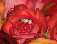 3-Stone Beauty by Caysie (CVB Inspired Design) : Show Me the Bling! (Rings,Earrings,Jewelry) • Diamond Jewelry Forum - Compare Diamond Prices, Discussions & Diamond Information