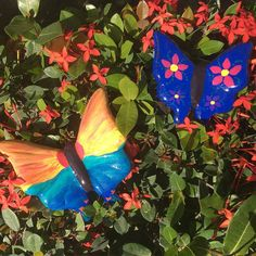 Some days you paint butterflies...a beautiful spring break tradition for nearly a decade. And some days you learn travel is an adventure filled with unexpected turns.