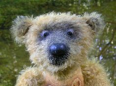 Paul , der Teddybär