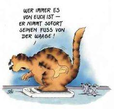 Genau, runter da German Language, Cartoon Pics, Cool Cartoons, Jokes, Lol, Motivation, Comics, Funny Things, Tanks