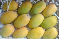 www.farmfirst.in  - Wholesale Agro Market