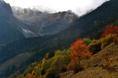 Mountains, Nature, Travel, Autumn, Colors, Naturaleza, Viajes, Trips, Nature Illustration