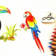 Es geht weiter mit einem Ara Papagei #scarlettmacaw . . . . . #denizeichnet #youtubechanell #youtubeillustrators #zeichnung…