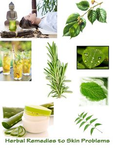List of Herbal Remedies to Most Skin Problems