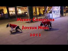 Watch the Video of the Skateboarding Dogs Wishing a Merry Christmas 2012 to everyone! http://www.bterrier.com/merry-christmas-2012-from-skateboarding-dogs/