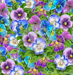 Pansy flowers abstract pattern. Digital Illustration. Spring Holiday abstract background with tricolor Viola flowers. For Art, web, print, wallpaper, greeting card, textile, fashion, fabric, texture, Home decor and more graphic design