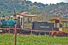 San Luis Obispo County Rustic Ranch Weddings & Stream Powered Trains