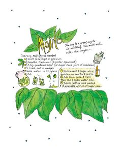This illustrated recipe shows how to make a mint mojito, including ingredients and preparation. This is an art print from my recipe book Comida Latina, an Illustrated Cookbook, which features 140 pages of my hand lettered original watercolor artwork and dishes that I learned how to make while traveling in Latin America. The print is a 9x12 digital reproduction of an original watercolor + pen and ink illustration. It is printed on 100lb EcoSilk Archival Paper with soy-based inks and…