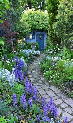 4月中旬を過ぎるとアジュガのブルーの花が美しく立ち上がります。