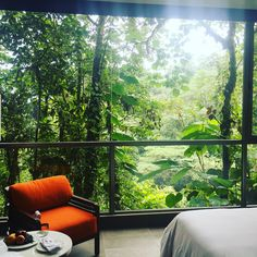 Ecuador is one of the most biodiverse countries in the world. I was lucky enough to experience this firsthand at Mashpi Lodge, a luxurious oasis located on a 3,212 acre cloud forest reserve.
