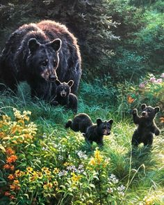 Bear Paintings, Wildlife Paintings, Wildlife Art, Cute Cartoon Drawings, Animal Drawings, Bear Spirit Animal, Black Bear Decor, Spectacled Bear, Eagle Painting