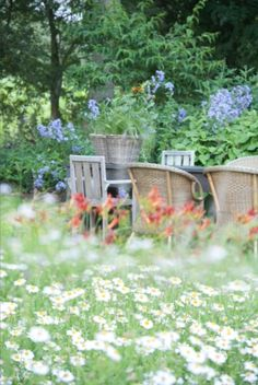 "This flowery outside area is from our feature ""Tales of Grass"""