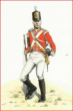 Foot 54th West Norfolk - Grenadier - 1801