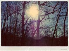 looking at sun