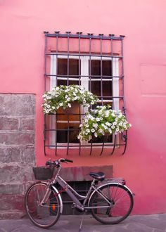 Italian Photography Fine Art Print No. 9370. 8x10 Lucca Italy Photo Tuscany Pink Bicycle Feminine Flowers Nature Green Nursery Kids Room Art