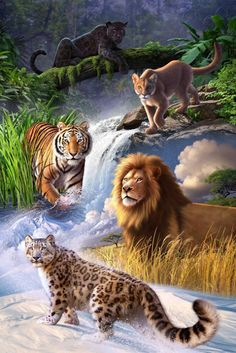 Earth Day Poster Art By Jerry Lofaro Big Cats Wild Cats - Earth Day Poster Art By Jerry Lofaro Jerry Lofaro Big Cats Gallery Wrapped Canvas Is A Commanding Composition Depicting A Meeting Of The Most Powerful Feline Players Of The Ju Big Cats Art, Cat Art, Beautiful Cats, Animals Beautiful, Pretty Cats, Animals And Pets, Cute Animals, Wild Animals, Farm Animals