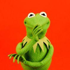 29 Burning Questions, Answered By Kermit The Frog Kermit Der Frosch Meme, Kermit The Frog Meme, Funny Kermit Memes, Cute Memes, Miss Piggy, Jim Henson, Sapo Kermit, Les Muppets, Sapo Meme