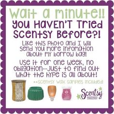 scentsy borrow bags - Google Search