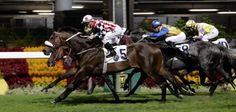 By Robert Kieckhefer, UPI Racing Writer Gormley and Sonic Mule are in the Kentucky Derby picture; Bela-Bela and Unique Bella both win,…
