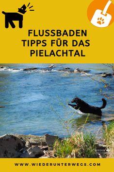 Bädertest im Pielachtal - Flussbaden par excellence. Wilde, Tours, Movies, Movie Posters, Travel, Camping, Art, Europe, Destinations