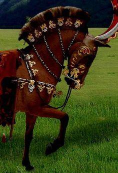 Horse headress and trappings-Pazirik-Altai area in Kurgan 1 Tuek. 430-420BC