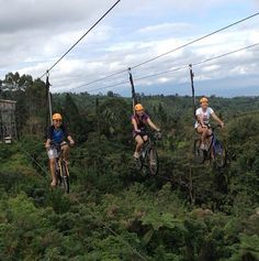 Shiri Z. went sky-cycling at Eden Park in Davao and loved it! Eden Park, Park Resorts, Davao, Hotel Reviews, More Fun, Philippines, Places To Go, Cycling, Asia