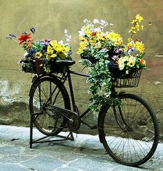 Floral bike, right near the Palazzo vecchio, Florence. Photo by Dianne Fournier-Bostic. Bicycle Decor, Bicycle Art, Flower Cart, Flower Boxes, Bike Planter, Paint Bike, Parks, Flower Planters, Small Gardens