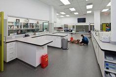 Clinic Interior Design, Clinic Design, Veterinary Care, Veterinary Medicine, Veterinarian Office, Building Design Plan, Vet Office, Dog Spa, Hospital Design