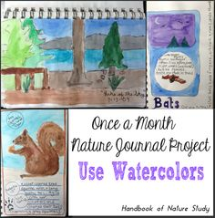 Once a Month Nature Journal Project Watercolors Charlotte Mason, Smarty Pants, Sense Of Place, Nature Study, Nature Journal, Outdoor Adventures, Grade 3, Teaching Tools, Botany